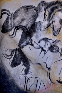On the walls of Chauvet Cave